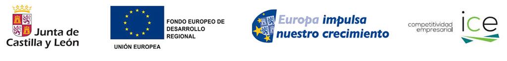 Junta de Castilla y León, Unión Europea e ICE