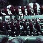 Chorizos en la fábrica de Embutidos Ballesteros
