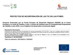 Proyectos de incorporación de las TIC en las PYMES